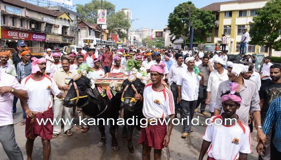 Massive protest in Mangaluru over ban on traditional Kambala sport.
